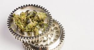 Detail of a marijuana grinder