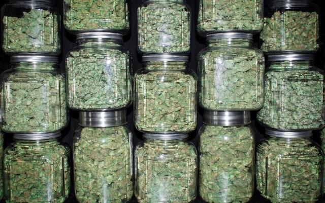montana-advocates-sue-over-marijuana-restrictions