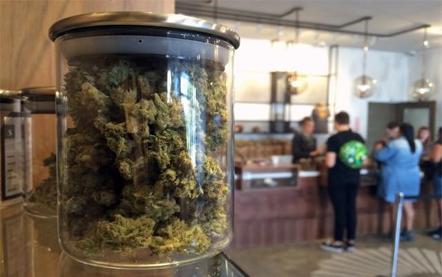denver-city-council-votes-to-cap-marijuana-businesses