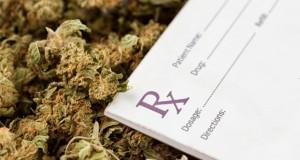 doctors-in-florida-preparing-to-prescribe-medical-marijuana