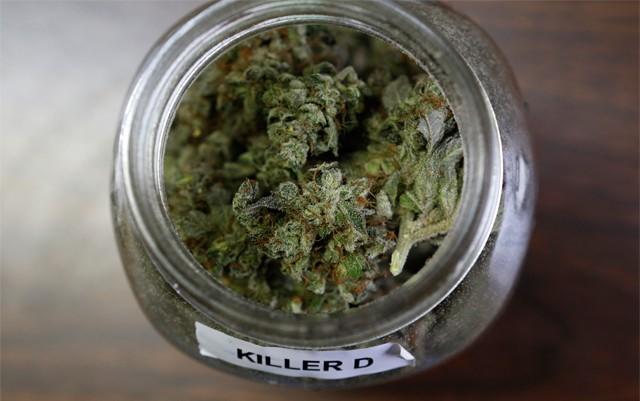cannabis-for-parkinsons-disease