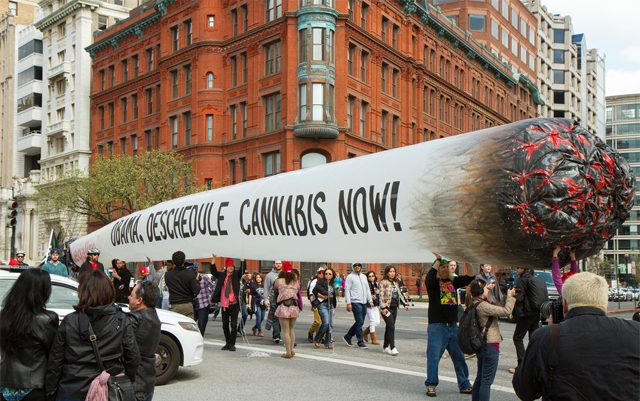 51-foot-joint-coming-to-DNC-in-philly