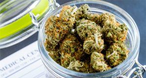 cannabis-as-a-treatment-for-overactive-bladder-and-continence
