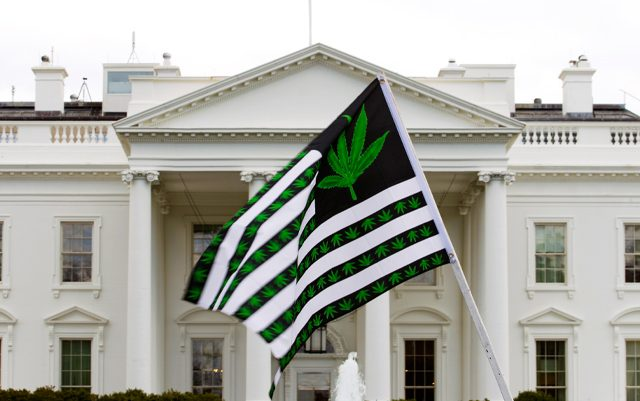 democrats-call-for-a-pathway-to-legalization