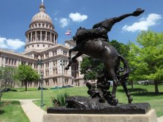 texas-aims-to-decriminalize-hemp-on-a-state-level