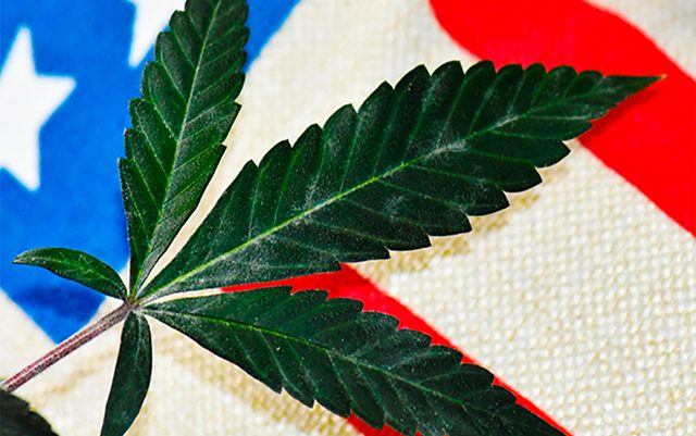 unlikely-allies-fighting-for-marijuana-legalization-in-virginia
