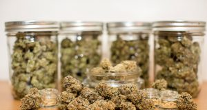 montanas-medical-marijuana-initiative-could-accidentally-delay-patient-relief