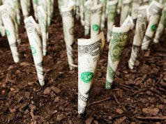 private-equity-firms-help-fund-the-growing-cannabis-industry