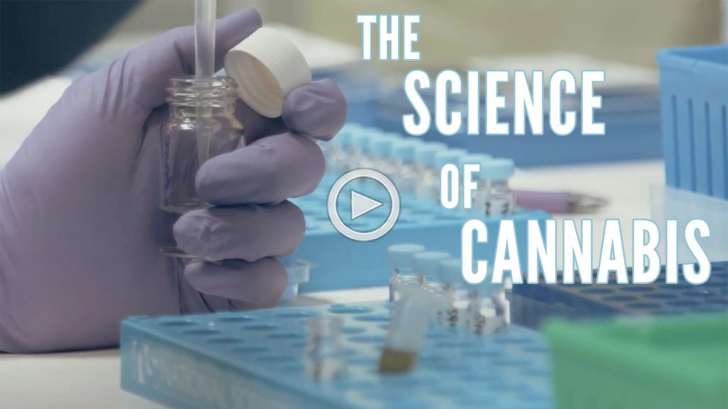 CAM_The_Science_Of_Cannabis