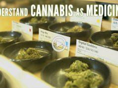 green-flower-media-understanding-cannabis-as-medicine