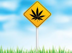 the-future-of-clinical-cannabis-part-3-political-implications-for-the-2016-presidential-election