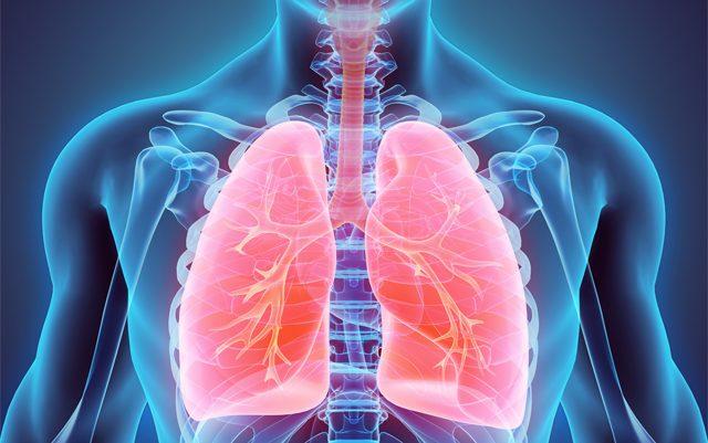 how-does-smoking-marijuana-impact-lung-health