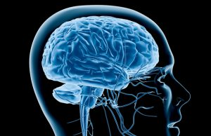 scientists-give-us-the-first-look-at-cannabinoid-receptors-in-the-brain