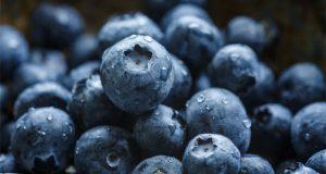 blueberry-blast-strain-review
