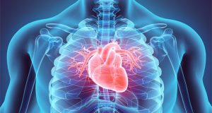 can-marijuana-use-weaken-heart-muscles