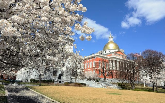 implementing-ma-legalization-laws-may-take-longer-than-expected