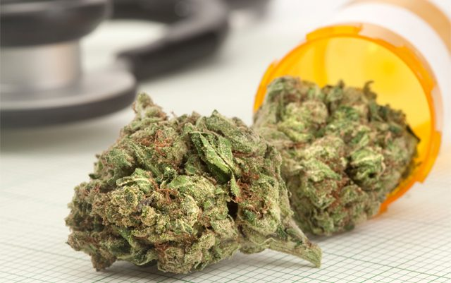 new-york-is-finally-moving-forward-to-expand-their-medical-marijuana-program