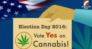 pro-pot-instagrammers-post-to-spark-the-vote