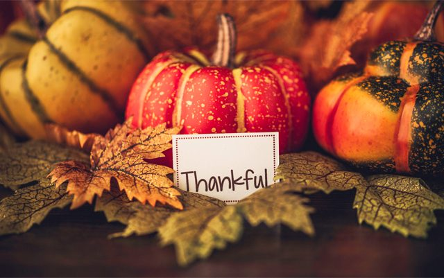 the-cannabis-community-has-alot-to-be-thankful-for-this-year