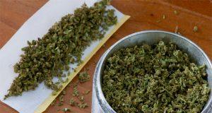 nevada-athletic-commission-to-consider-lifting-ban-on-marijuana