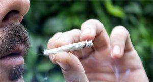 does-a-new-study-prove-smoked-marijuana-is-harmful