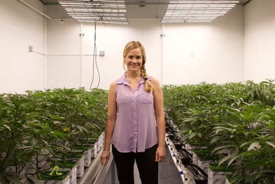 how-outcos-fully-automated-greenhouse-will-improve-cannabis-cultivation