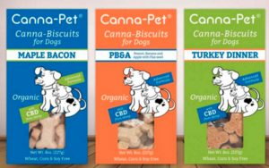 cannabis-and-canines-img-2