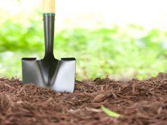 why-hemp-mulch-is-better-for-vegetable-gardens