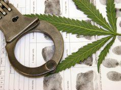 FL-senate-committee-to-consider-cannabis-decrim-bill