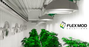 flexMOD-solutions-launches-cultivationMODs-cannabis-growing-container