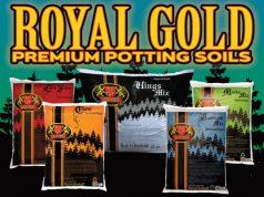 royal-gold-coco-potting-soil