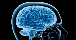 scientific-researchers-find-cannabis-may-improve-memory-in-the-elderly