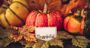 5-things-the-cannabis-industry-can-be-thankful-for