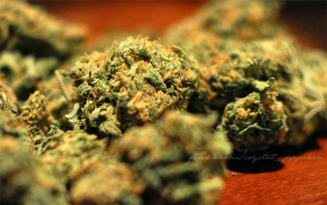 utah-police-give-presentation-on-ills-of-marijuana