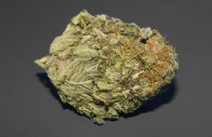 dream-queen-strain-review