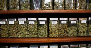 study-shows-no-link-between-medical-marijuana-dispensaries-and-increased-crime-rates
