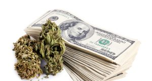 CA-treasurer-suggests-state-run-bank-for-cannabusinesses