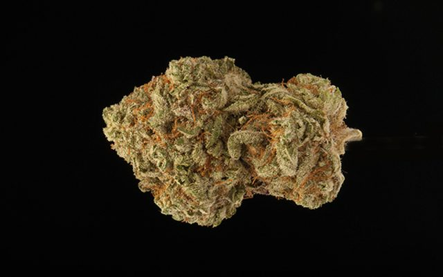 hurricane-strain-review
