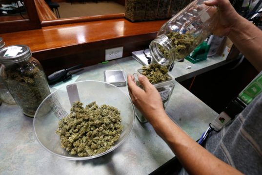 legal-cannabis-sales-could-surpass-soda-by-2030