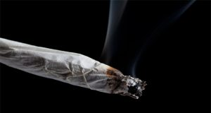 FL-patients-continue-to-fight-for-the-right-to-smoke-MMJ