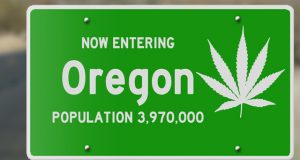 oregon-to-stop-processing-new-recreational-MJ-licenses-after-june-15