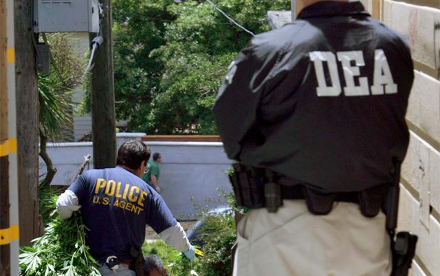 DEA Cannabis Seizure Figures Suggest Black Market Slowly Fading