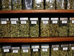 consumers-in-MA-still-waiting-on-retail-marijuana-sales