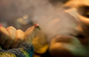 study-shows-no-link-between-legalization-and-problematic-cannabis-use