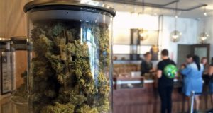 cannabis-sales-soar-depsite-having-having-few-open-dispensaries