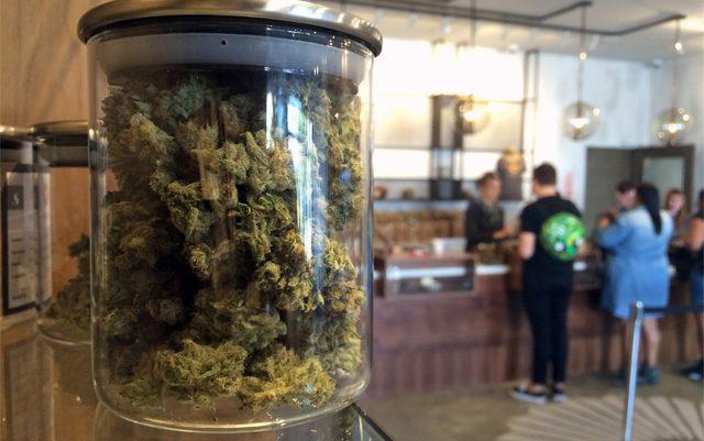 cannabis-sales-soar-depsite-having-having-few-open-dispensaries