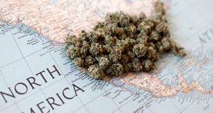 breaking-down-marijuana-law-reform-in-2020
