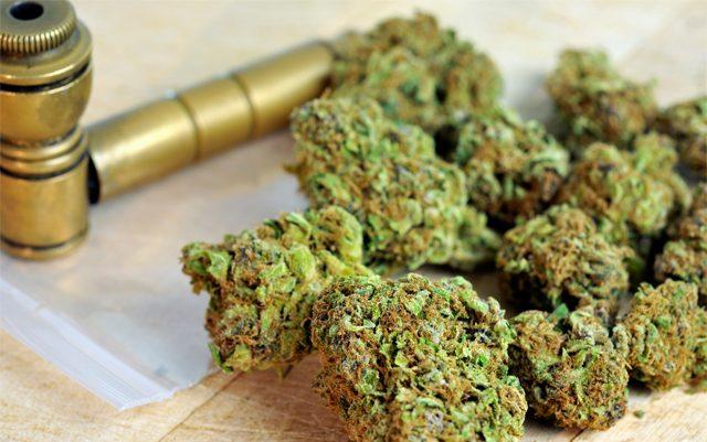 michigan-creates-new-website-to-answer-marijuana-questions