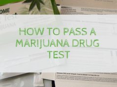 how-to-pass-a-marijuana-drug-test-420-times