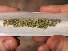 does-adolescent-marijuana-use-lead-to-depression-later-in-life